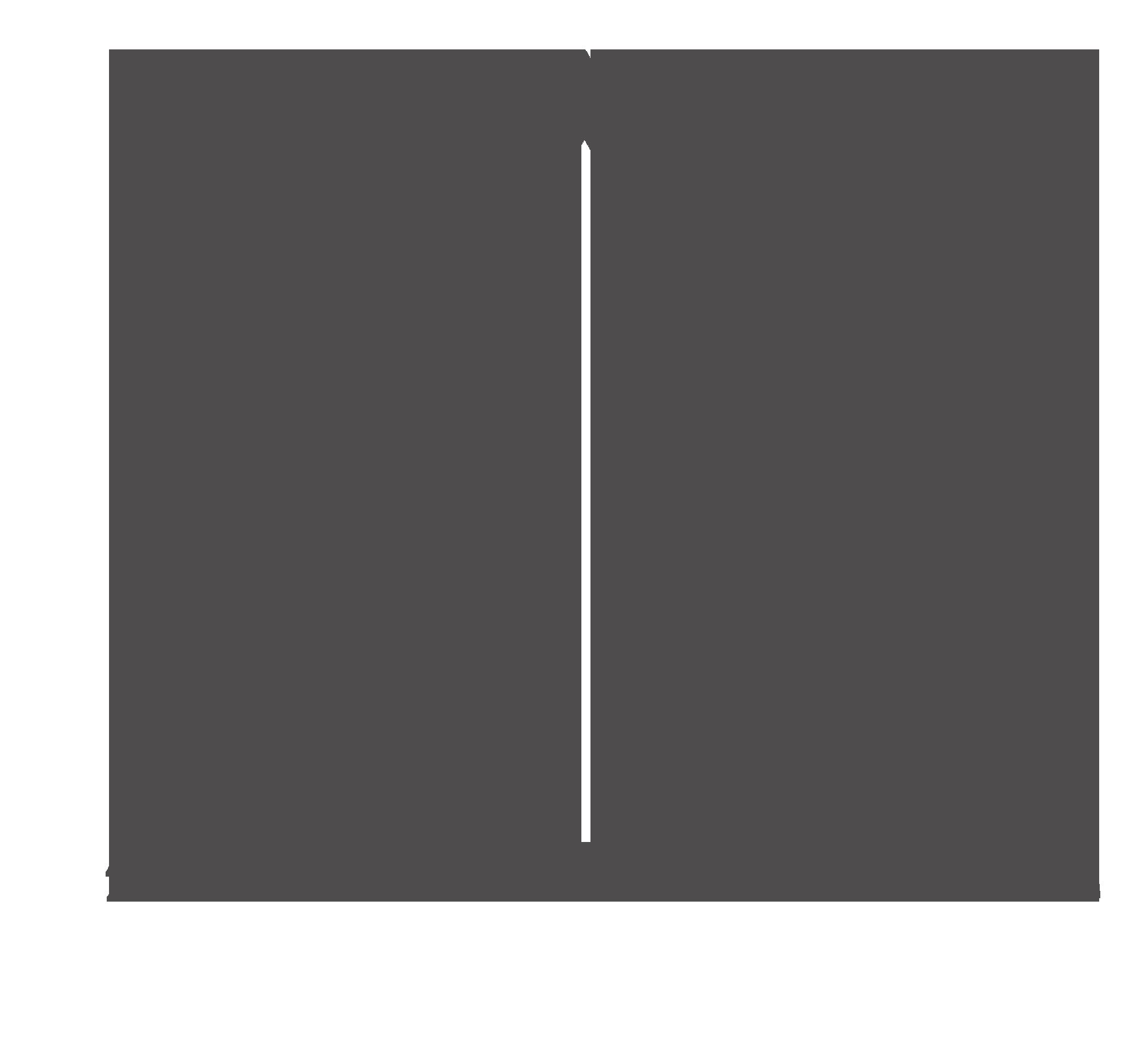 Grey Team logo V4 Grey Transparent